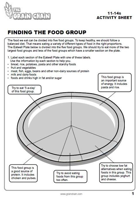 health phlet template eatwell plate worksheet get pupils to plan a healthy