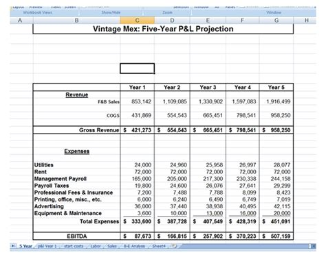 5 Year Business Plan Template Excel 3 year business plan template 5 year business plan