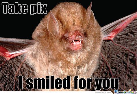 Bat Meme - bat smile by mandizzle meme center