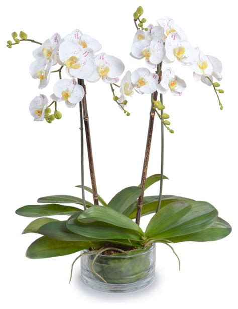 white phalaenopsis silk orchid floral design o131 phalaenopsis orchid arrangement white purple
