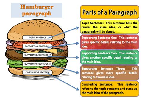 burger writing template essay writing hamburger method coursework sle 2169