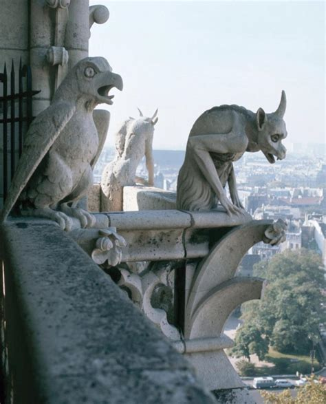 gargoyles grotesques drolleries on architecture cathedrals and