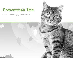 Cat Powerpoint Template by Free Cat Powerpoint Templates