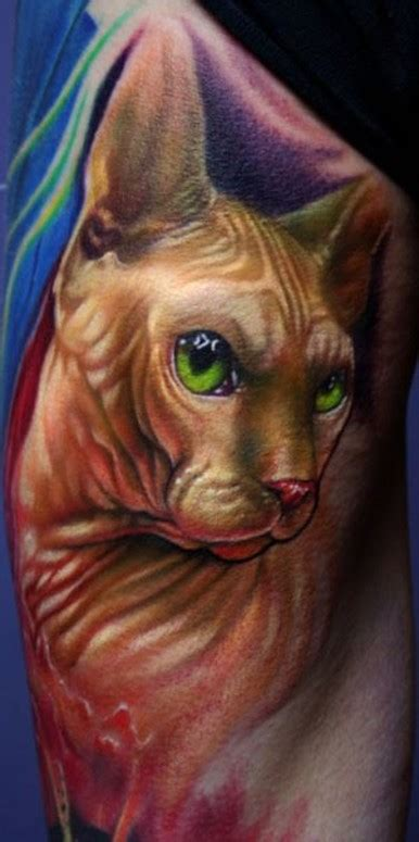 cat tattoo artist hairless cat tattoo by paul acker tattoonow