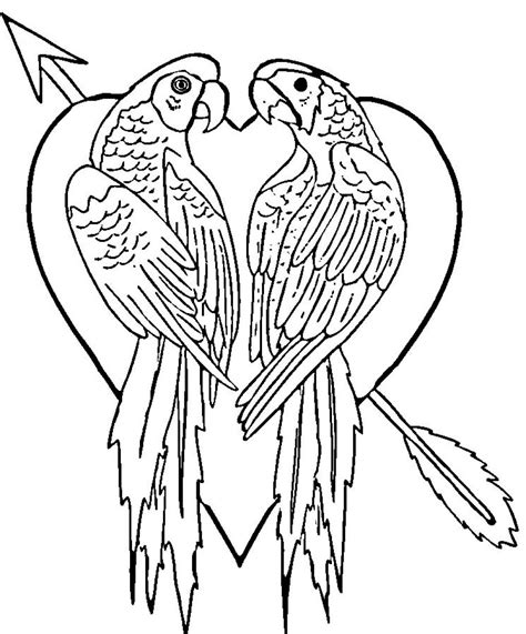 coloring pages of free printable parrot coloring pages for