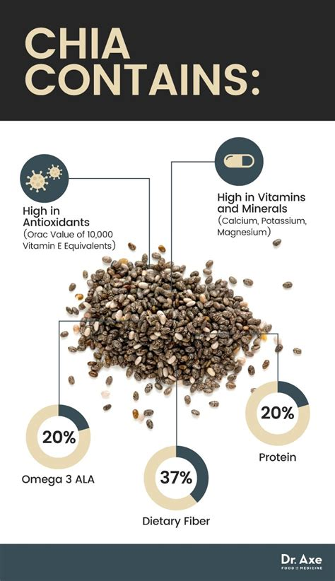 Chia Seed chia seeds benefits the omega 3 protein packed superfood