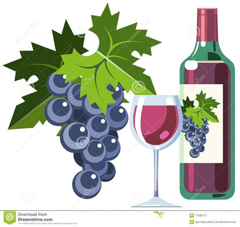 cartoon wine bottle clipart grapes wine clipart collection grape vine clip