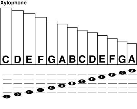 diagram of mallet pin marimba notes diagram