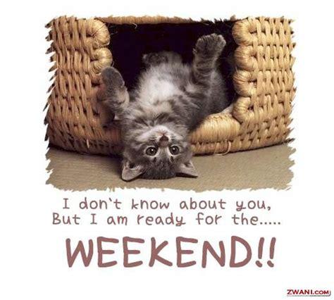 Weekend In Groupon Newbie Fact Happy Weekend Fabulously Fru