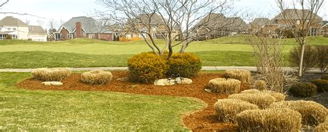 17 popular landscaping in louisville dototday com