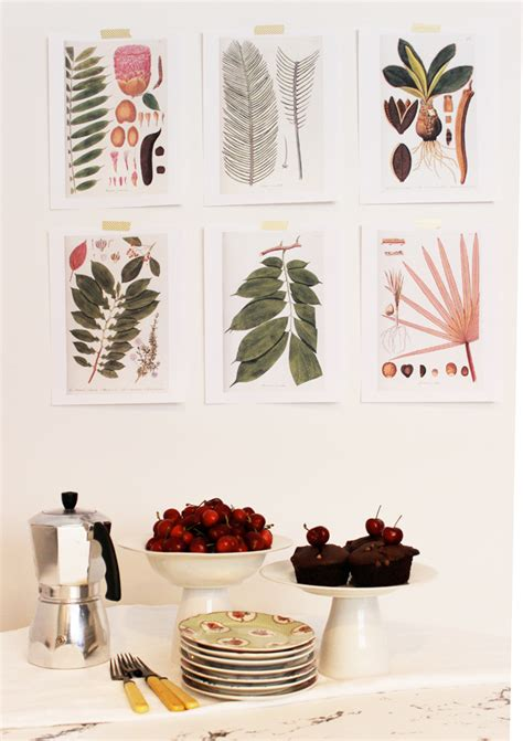 printable art diy free download botanical prints poppytalk