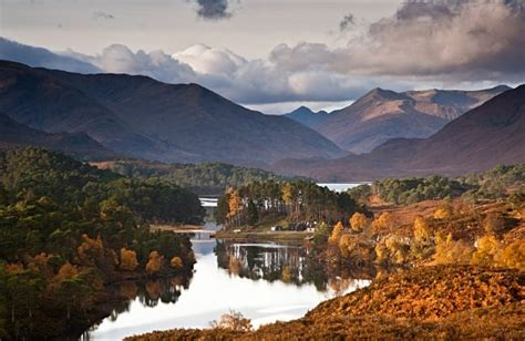 glen affric our tours loch ness inverness tours discover scotland