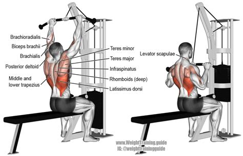 best lat exercises medium grip lat pull exercise and