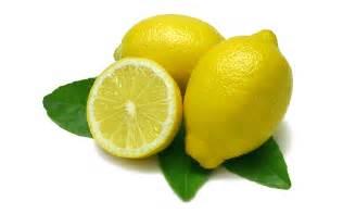 lemon photo lemon wallpaper 1920x1200 67013