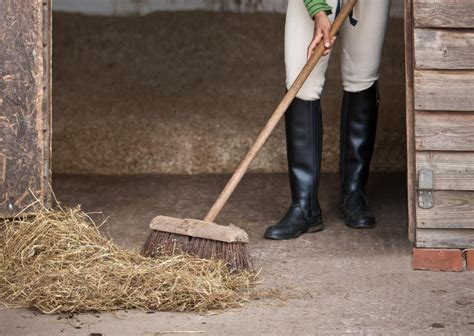 mucking stalls how to muck out or clean a s stall