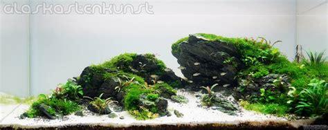 Batu Seryu broken scenery flowgrow aquascape aquarien datenbank