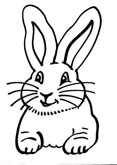 animali da cortile da colorare disegno coniglio da colorare disegno lepre da colorare