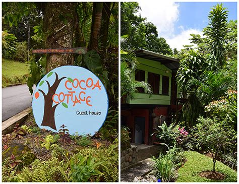 cocoa cottages dominique cocoa cottage a taste of my
