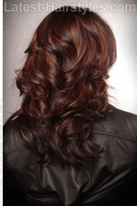 copper brown toner hair copper and red tones on dark brown hair love this might