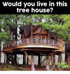 would you live in this tree house dank meme on sizzle