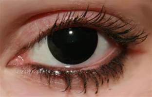 black color contacts geo animation black contact lens cp f7 contacts cow