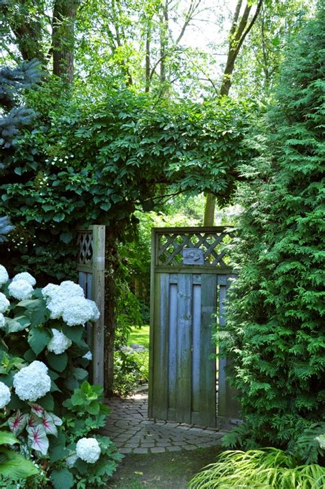 garden between houses hometalk gardening ideas for the narrow garden between suburban homes