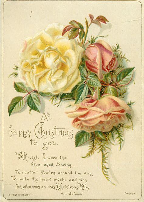 yellow   pink roses tuckdb ephemera