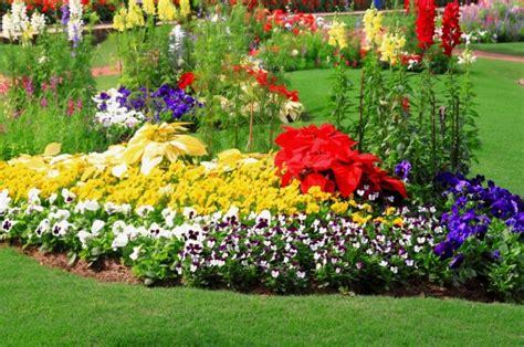imagenes de jardines caseros trucos caseros para tener un jard 237 n sano 176 jardiner 237 a