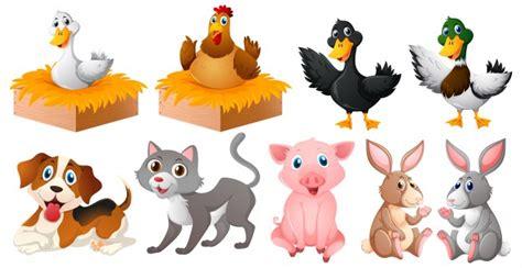 imagenes de animales varios diferentes tipos de animales de granja descargar