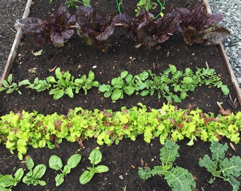 Garden Of Keto List Of Keto Friendly Foods Keto Diet Results