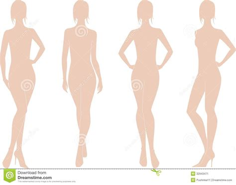 w figures womens figure stock vector image of fashion proportions