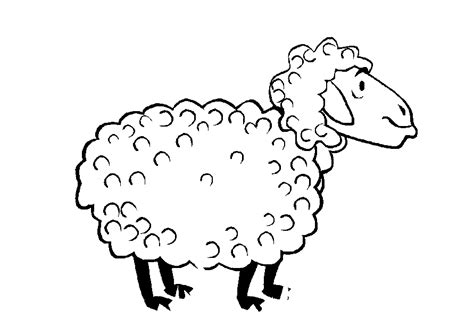 Sheep Coloring Pages Coloringpages1001 Com Sheep Colouring Page