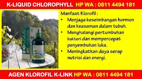 K Liquid Chlorophyll Klorofil Agen Distributor Termurah Grosir promo k liquid chlorophyll nutritional drink hp wa 0811 4494 181