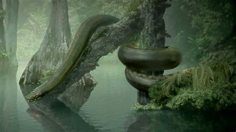 film ular nakonda titanoboa monster snake hd youtube