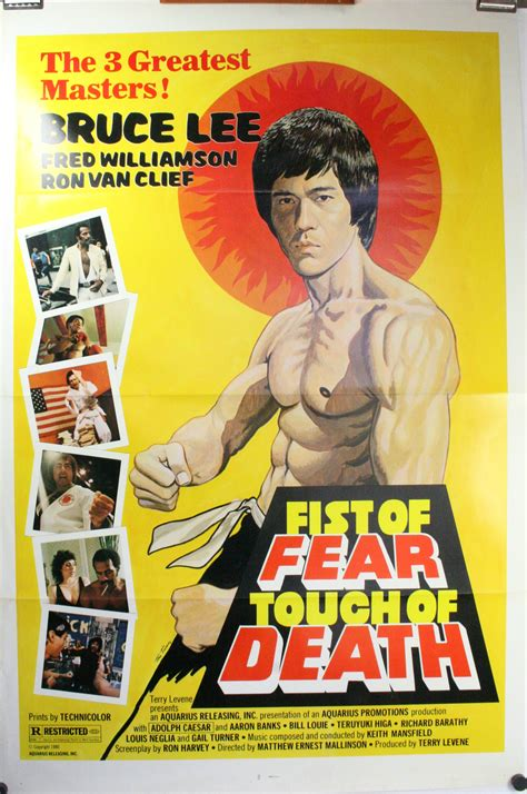 Vintage Classic Bruce Poster The Way Of The 42x30cm Of Fear Touch Of Bruce Fred Williamson