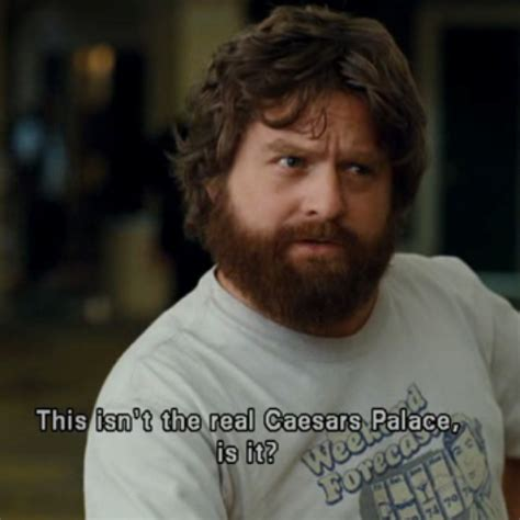 film lucu zach galifianakis 30 best images about the hangover on pinterest zach