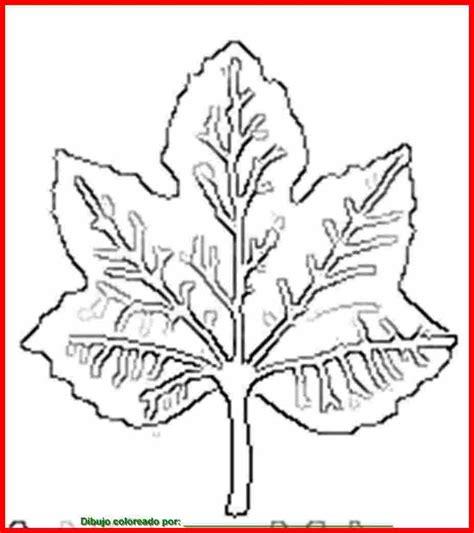 imagenes de flores y arboles dibujo de hojas