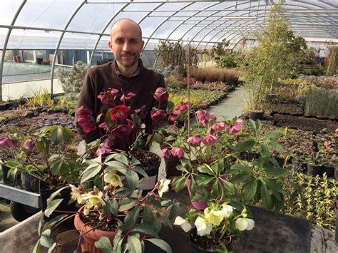 fiori da esterno in vaso perenni vaso grande per le nostre piante perenni