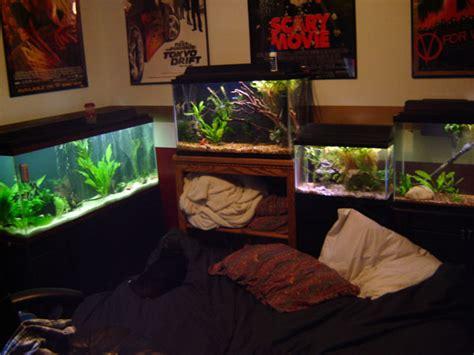 room fish member spotlight coryd55