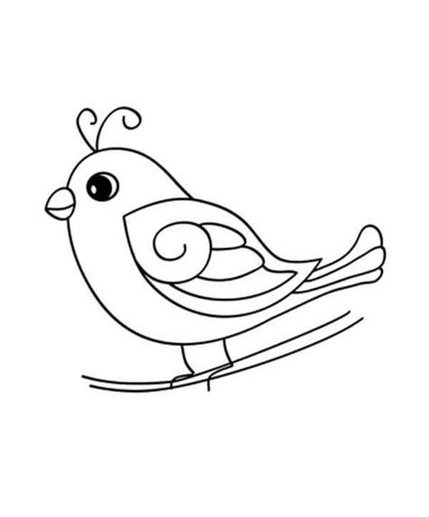 preschool coloring pages birds 84 bird coloring pages for preschoolers color by