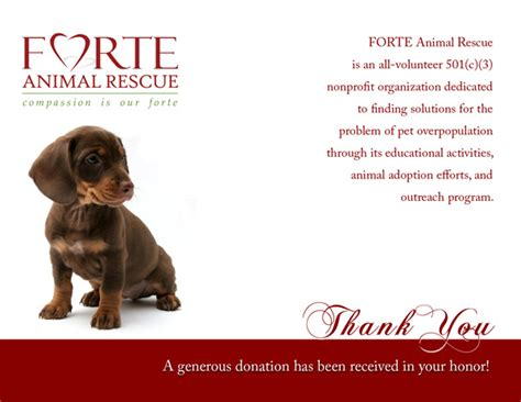 thank you letter to rescue team print portfolio is logo design business card