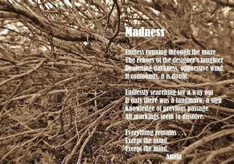 y of madness family addiction by royla asghar madness all types of poetry Poet