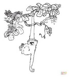 disegno nella foresta pluviale da colorare disegni da colorare stampare gratis