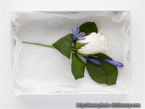 corsage photo picture definition at photo dictionary