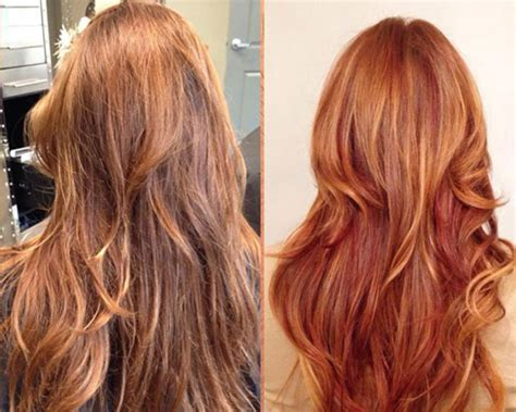 light brown hair with red highlights saratoga winter hair styles