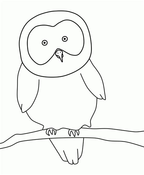 printable owl pictures to color free printable owl coloring pages for kids