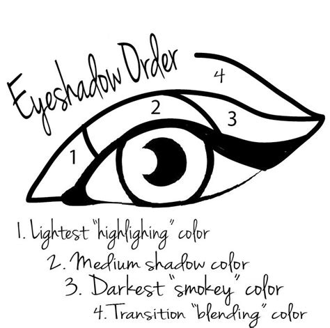 eyeshadow diagram how to apply eyeshadow step by step