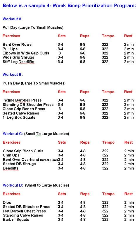 workout plans for men to build muscle at home bicep building workout the bicep building priority program