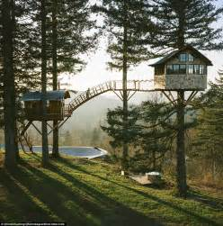 Pictures Of A Treehouse - washington treehouse has skatepark and wood fired tub daily mail online