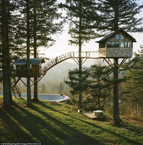washington tree houses washington treehouse has skatepark and wood fired tub daily mail online